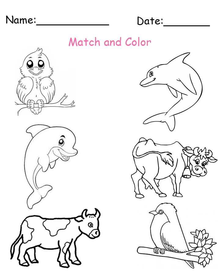 Match and Color the Baby Animals Worksheet
