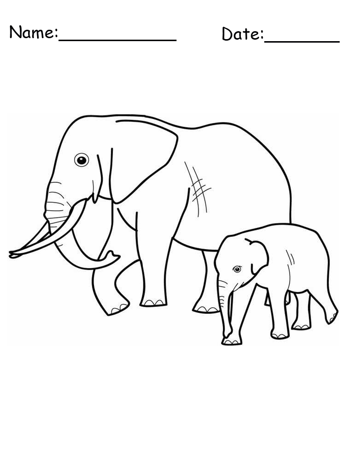 Two Elephants Animal Printable Coloring Pages