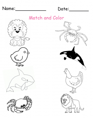 printable matching animals worksheets
