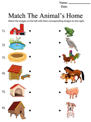Match the Animal's Home Printable Worksheets