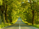 Printable Country Road Nature Picture