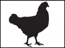 Printable Rooster Stencil