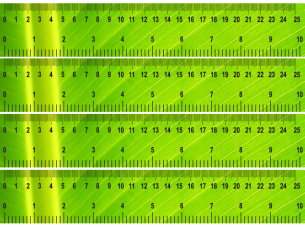Green Shiny Printable Ruler