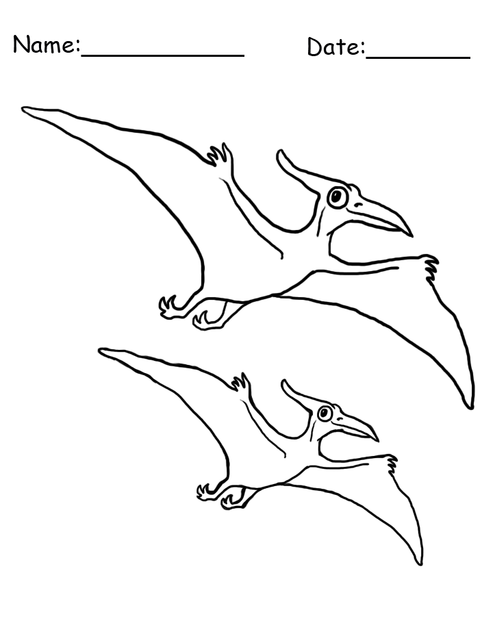 Flying Dinosaur Coloring Sheet
