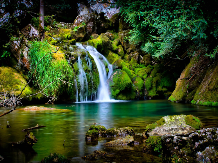 Lush Waterfall Printable Nature Pictures